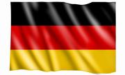 Перевод с немецкого языка,  быстро и качественно,  устный и письменный.